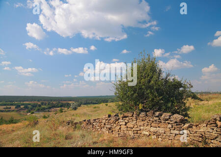 Rural landscape, a ruined fence made of natural stone, bush, pasture, in the background the river, the forest against - Stock Photo