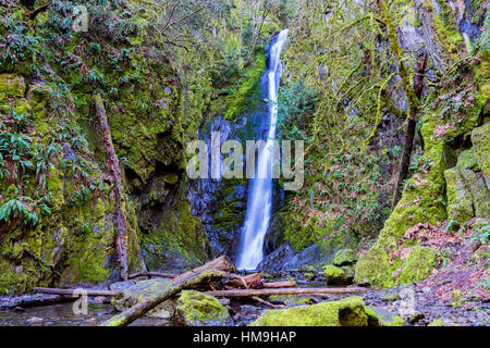 Nature of Vancouver Island - Niagara waterfalls in Early spring, Goldstream provincial park, Vancouver island, Canada - Stock Photo