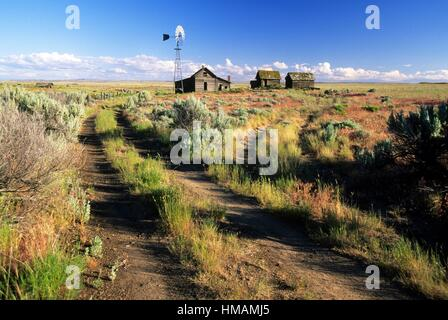 Old homestead, Journey through Time National Scenic Byway, Sherman County, Oregon. - Stock Photo