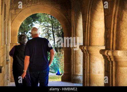 peacock viewed through the arches of Filerimos monastery, rhodes, greece - Stock Photo