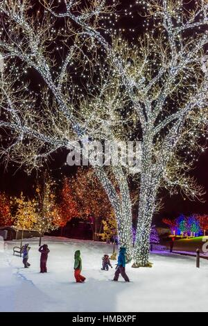 Children Playing In Snow A Hudson Christmas Holiday Light Show At Stock Photo Royalty Free