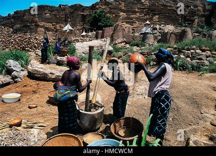 Women pounding millet in a mortar, Dogon village of Ireli, Mali. - Stock Photo
