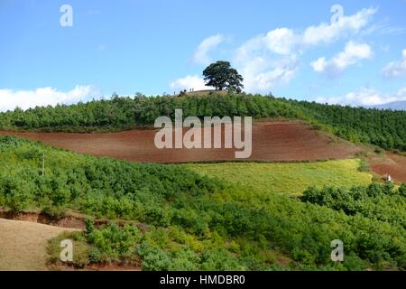 Terrace cultivation red lands dongchuan district for Terrace cultivation