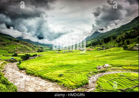 Terraced rice fields near Ta Van village in Valley of Muong Hoa river, Sa Pa District, Lao Cai Province, Vietnam. - Stock Photo