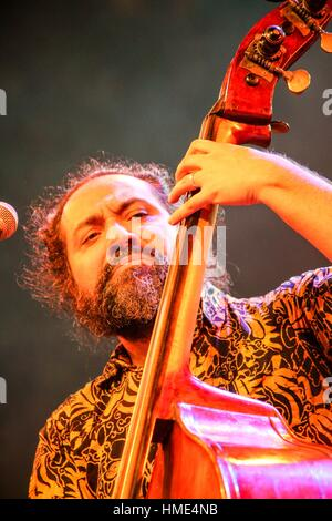 A Jazz Musician Plays contra bass in Cairo jazz festival, Egypt - Stock Photo