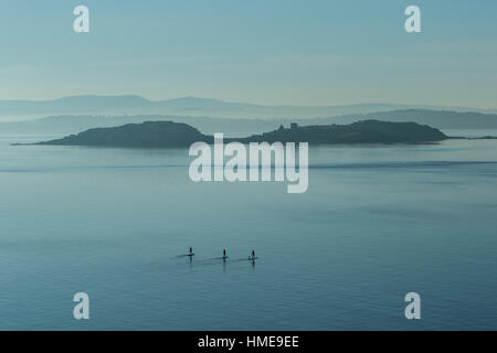 Three stand up paddle boarders on open water - Stock Photo