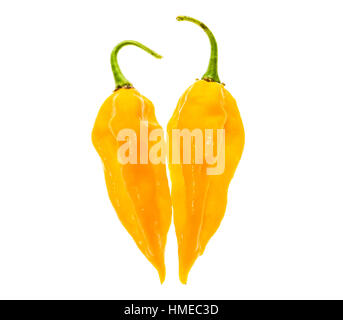 Two Ripe fresh fatalii yellow chili hot pepper with green stem isolated on white background - Stock Photo