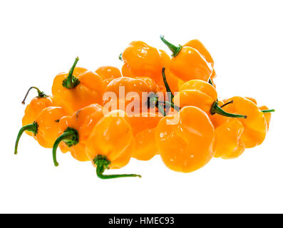 Bunch of Yellow orange ripe habanero hot chili peppers. Isolated on white. - Stock Photo