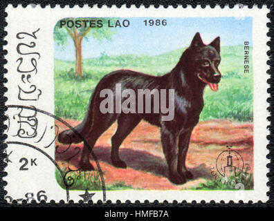 A postage stamp printed in Aos shows a dog  German Shepherd, from series Breeds of dogs , circa 1986 - Stock Photo
