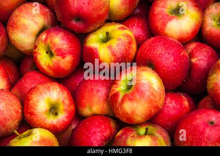 A close-up of a basket of red apples for sale at Alyce and Rogers Fruit Stand in Mount Tremper, New York, USA. - Stock Photo