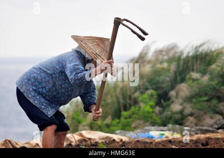 Aguni Island (Okinawa, Japan): aged woman working in a field - Stock Photo