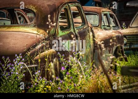 Old, scrapped motor vehicles. Cape Town, South Africa. - Stock Photo