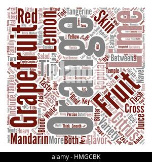 A Quick Guide To Citrus Fruits text background word cloud concept - Stock Photo