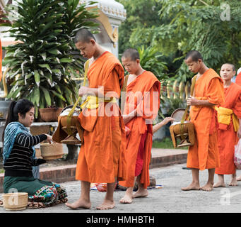 Monks collecting rice alms during early morning tak bat procession - Stock Photo