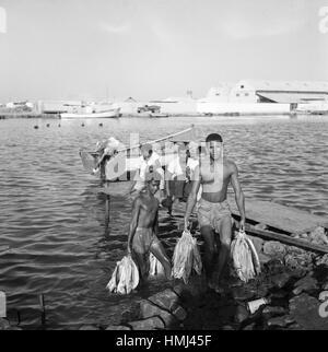Jungen tragen Fische aus dem Rio Manzanares in Cumaná ans Ufer, Venezuela 1966. Boys carry fish out of the Rio Manzanares - Stock Photo