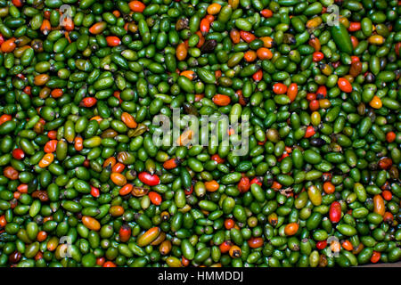 Red and green peppers on a market - Stock Photo
