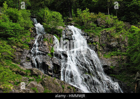 waterfall in the Black Forest in Germany - Stock Photo