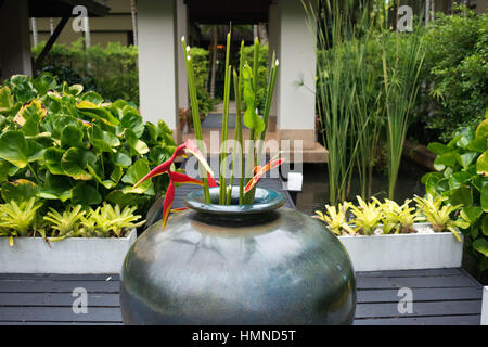 Vase with flowers in the garden in the spa of Anantara Si Kao Resort & Spa, south of Krabi, Thailand. Located on - Stock Photo