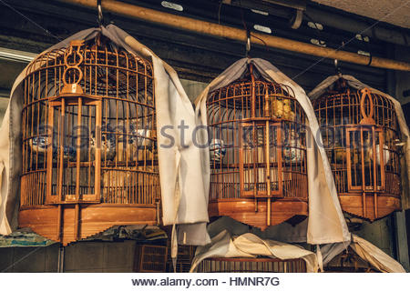 Bird cages for sale near the Yuen Po Bird Garden in Mongkok_ Kowloon_ HK - Stock Photo