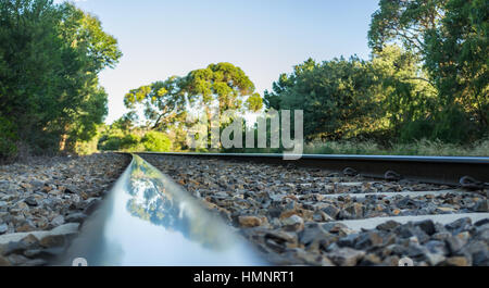 Closeup of rail track with tree reflection. Shallow depth of field. - Stock Photo