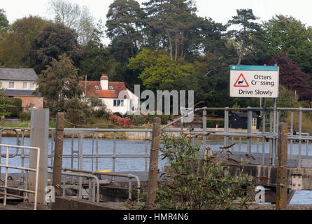 Sign warning of otters (Lutra lutra) crossing the road. Lymington, Hampshire. UK - Stock Photo