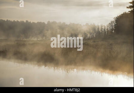 Mist rises from a marsh on a lake.  Contrail in pale summer sky.  Sunrise over narrow passage of a lake.   A row - Stock Photo