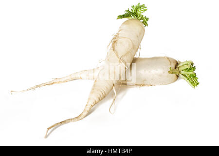 Raw Daikon radish isolated on white background. - Stock Photo