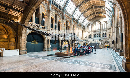 London, United Kingdom - October 19, 2016: Tourists are visiting Natural history museum in London, England. - Stock Photo