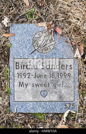 Wantagh, New York, USA. 5th Feb, 2017. Granite tombstone for pet bird BIRDIE SANDERS (1992 - 1999) with epitaph - Stock Photo
