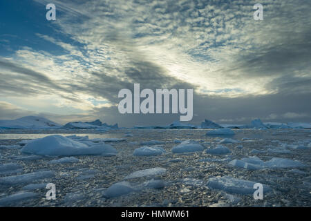 Landscape view of icebergs floating in channel, Booth Island, Antarctic Peninsula in January 2014. - Stock Photo