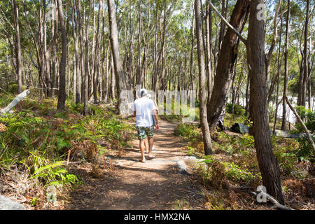 Man on Scribbly Gum Track part of the White Sands walk along the white sand beaches of Jervis Bay on the South Coast - Stock Photo