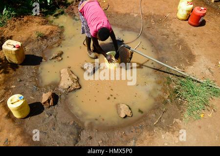 KENYA, Mount Kenya East, Mitunguu, village Karima Kaathi, water supply by pipe from source, women fill jerry cans - Stock Photo