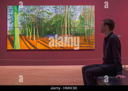 Tate Britain, London, UK. 6th Feb, 2017. Woldgate woods 6 &9 November, 2006 - David Hockney, a major new retrospective, - Stock Photo