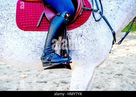 Reiter und Sattel; riding and saddle - Stock Photo