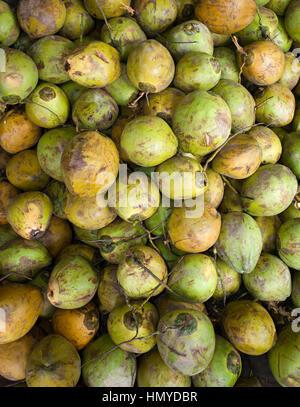 Pile of whole coconuts at refreshment stall, Batu Caves, Kuala Lumpur, Malaysia - Stock Photo