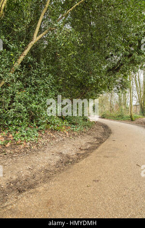 old walking path made of tar in a British park during a claudy day - Stock Photo