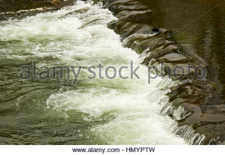 White water flowing over stepping stones on a fst flowing river in South Wales - Stock Photo