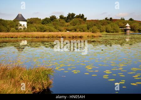 White round boat house on a lake with lily pads in South West Wales - Stock Photo