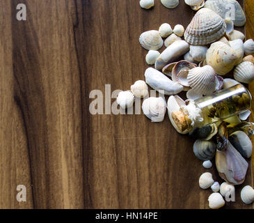 Background with sea cockleshells on a wooden substrate - Stock Photo