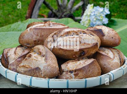 Brazilian french bread integral - Stock Photo