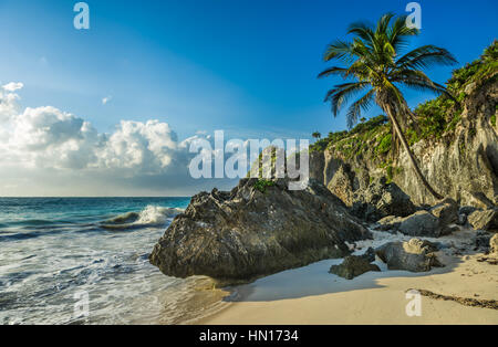 Caribbean beach with coconut palm, Tulum, Mexico - Stock Photo