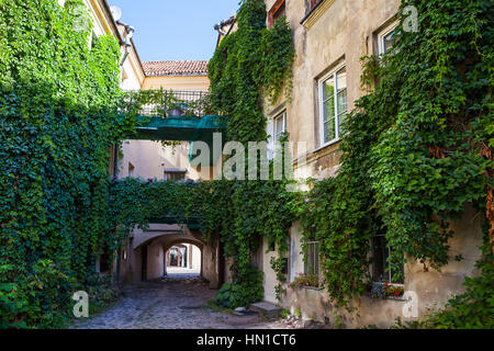 House facade with wild grapes plants, cosy courtyard in Vilnius, Lithuania - Stock Photo
