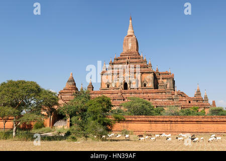 Myanmar (Burma), Bagan, Sulamani Pahto - is one of Bagan's most attractive. This temple, known as the Crowning Jewel, - Stock Photo