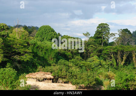 Overview of the jungle and river in Taman Negara National Park, Malaysia - Stock Photo