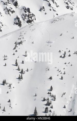 A Snowboarder Descending A Fresh Powder Run At Timberline In The San Juan Mountain Range - Stock Photo