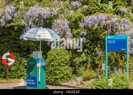 Wisteria Growing At Cleeve Lock Goring On Thames Oxfordshire UK - Stock Photo