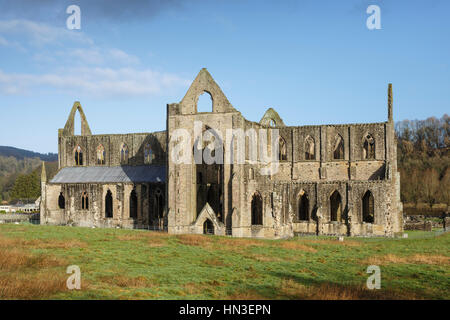 Tintern Abbey, Wye Valley, Monmouthshire, Wales