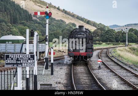 Llangollen Railway steam train approaching Carrog station, North Wales - Stock Photo