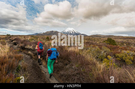 Hikers, volcano, Mount Tongariro and Mount Ngauruhoe, Tongariro National Park, Southland, New Zealand - Stock Photo