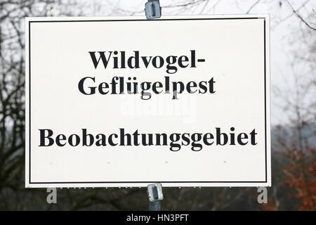 Warning sign bird flu, avian influenza surveillance area, Pinneberg, Schleswig-Holstein, Germany - Stock Photo